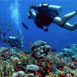 plongee-sous-marine-australie